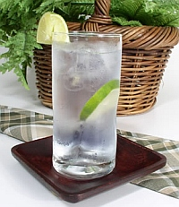 Animas Wine gin and tonic recipe
